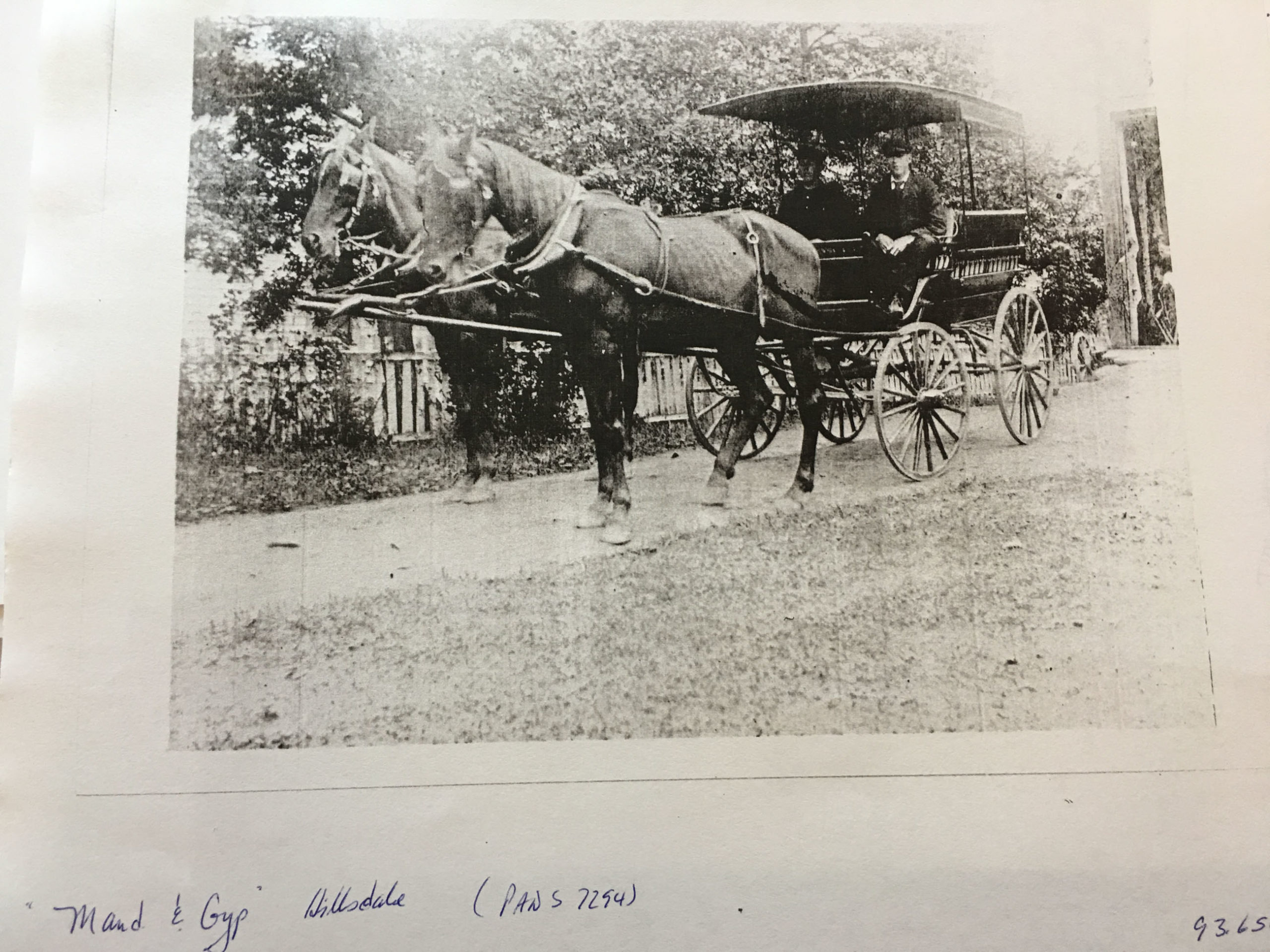 The driver of this taxi is William Perkins (not sure which one). The horses are Maud & Gyp. (source: Annapolis Historical Society)