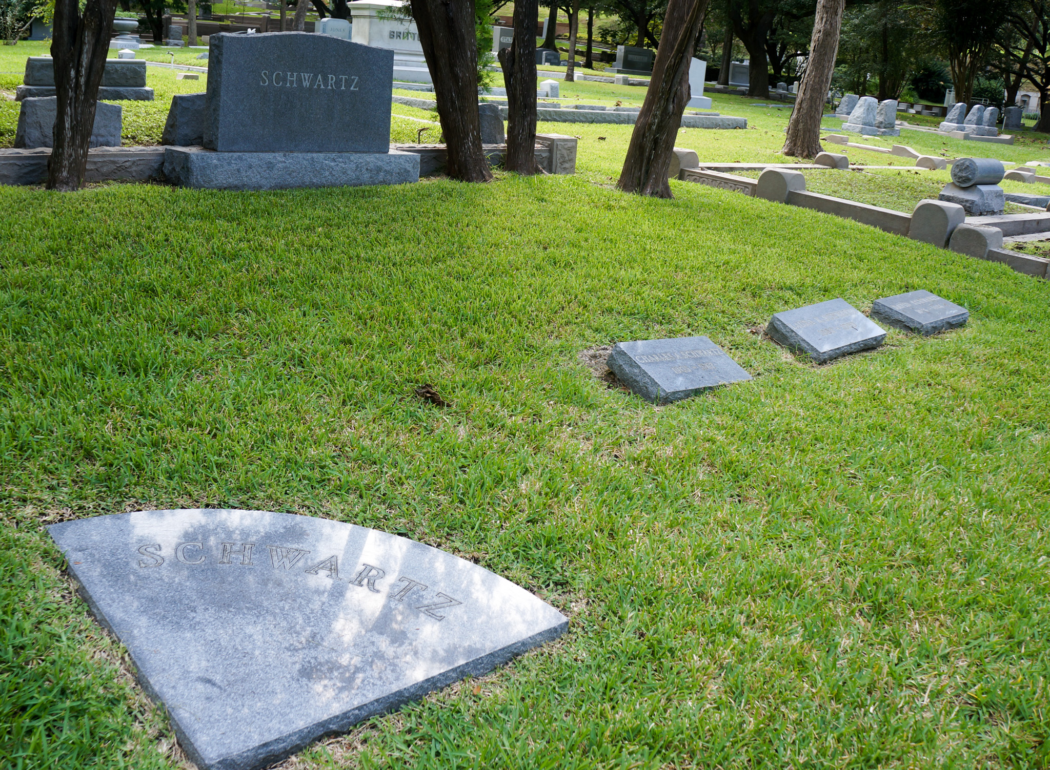 David & Laura Schwartz Family Grave Site