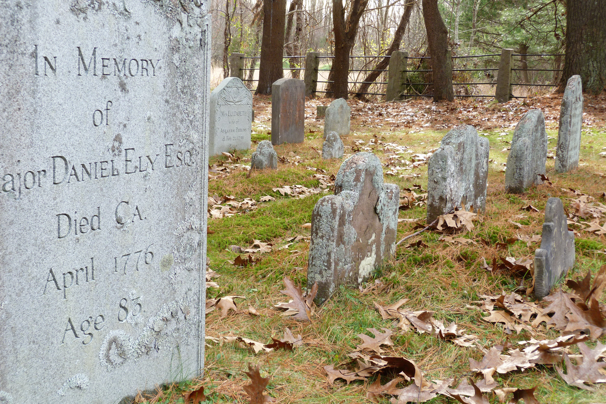 Daniel Ely Family Grave site
