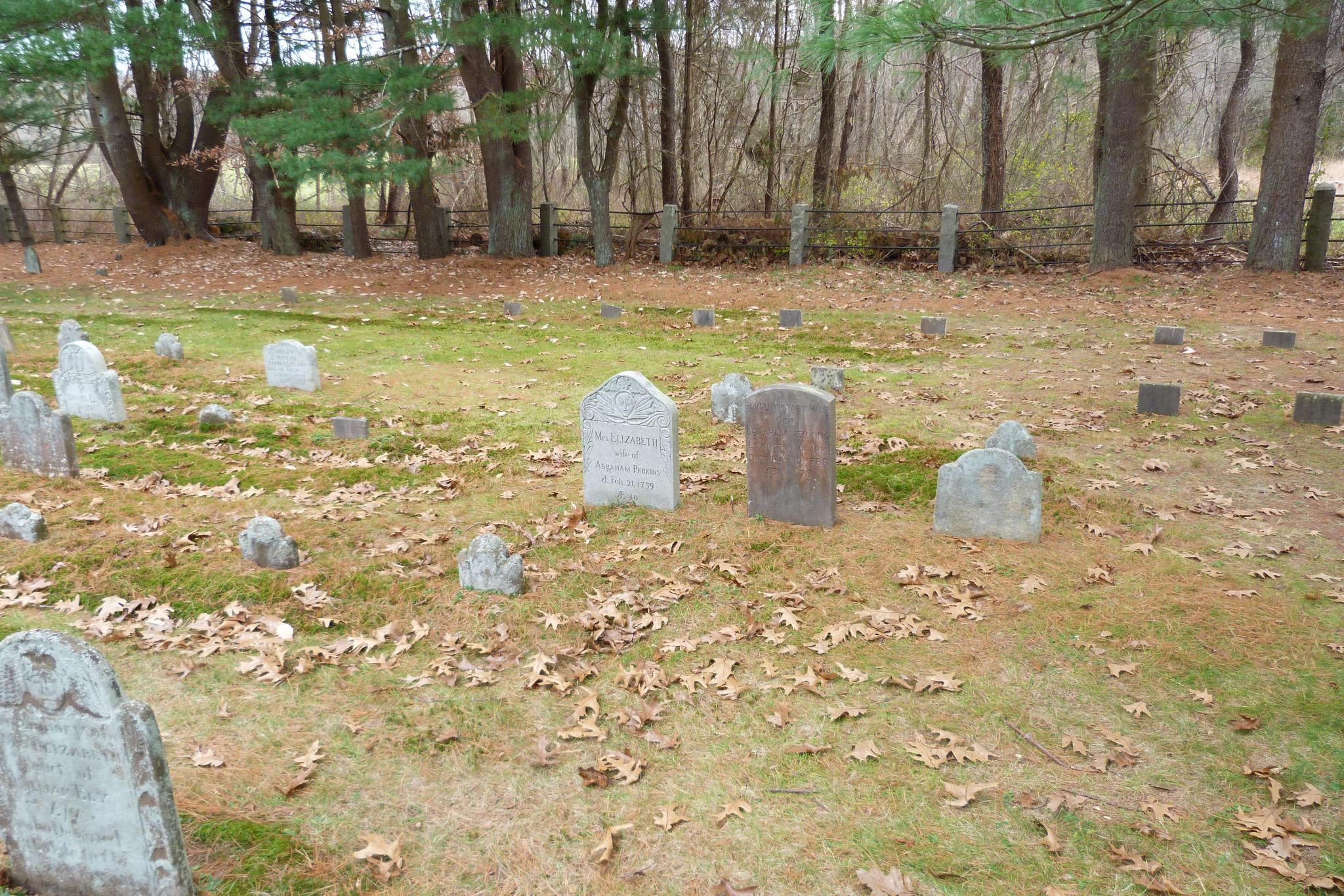 Perkins Family Gravesite in Ely Cemetery