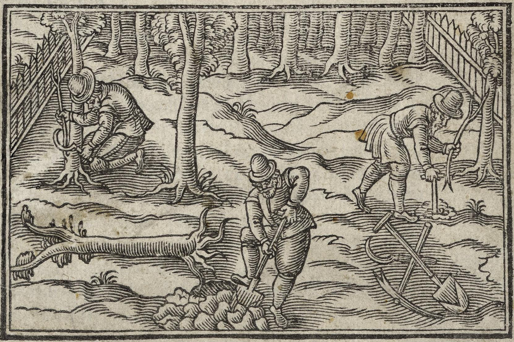 Yeomen planting and grafting fruit in 1618