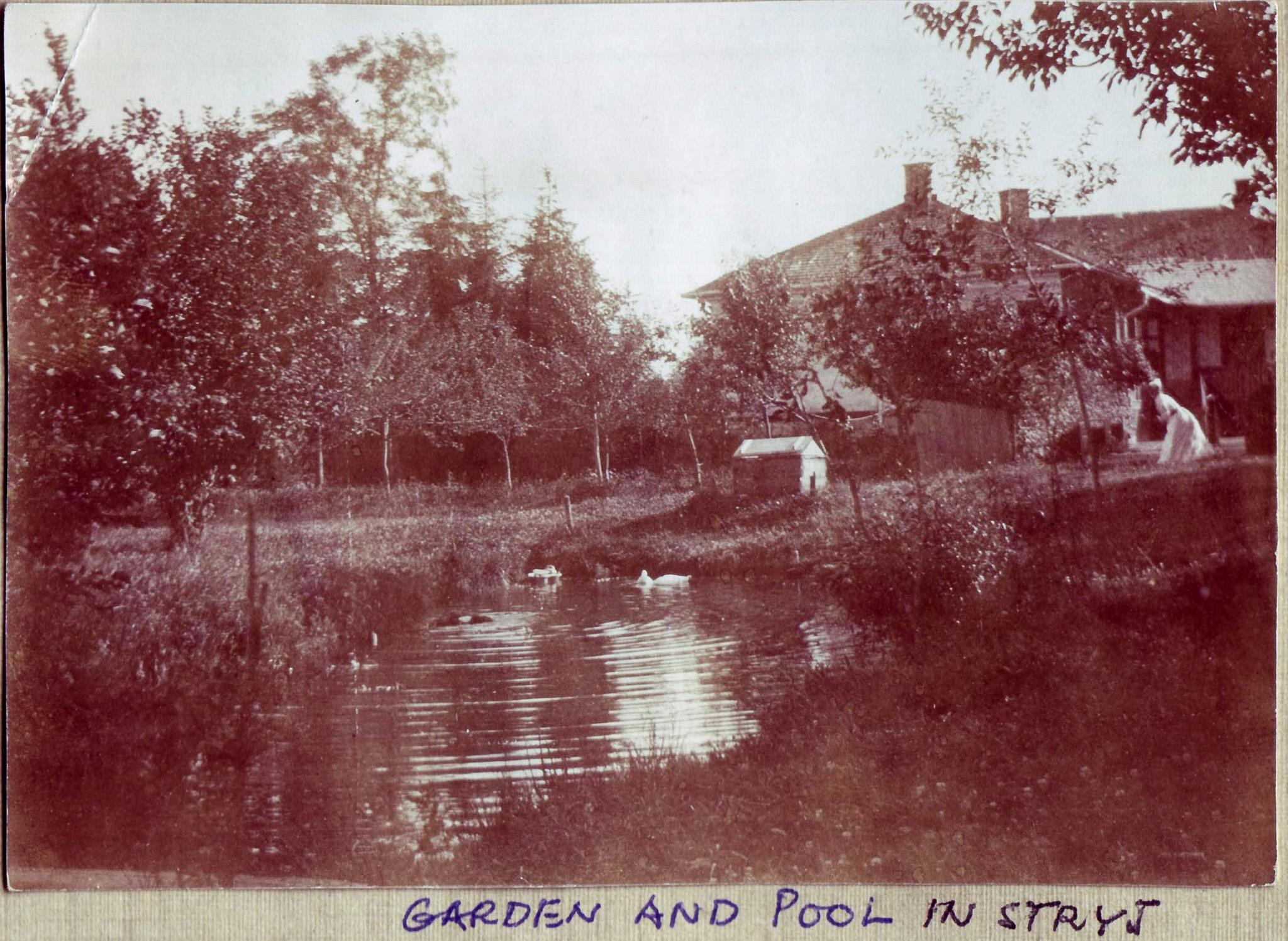 Garden and Pool in Stryj